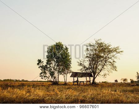 The hut in field
