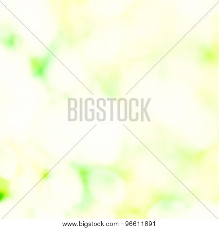 Summer Soft Light Abstract Background  With Bokeh. Green And Yellow Color