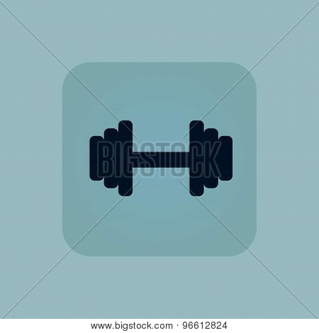 Pale blue barbell icon