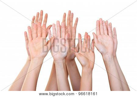 People Raise Hands