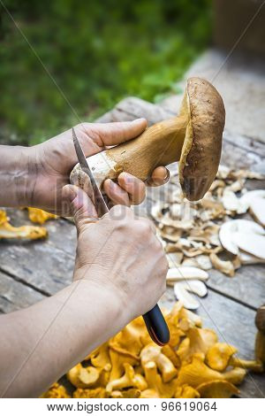 Slicing Fresh Edilus Mushrooms On A Wooden Table