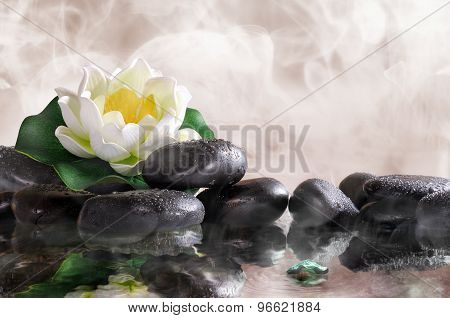 Water Lily On Black Stones With Water And Vapour