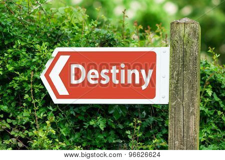 Direction Arrow, Sign To Destiny In Red Color