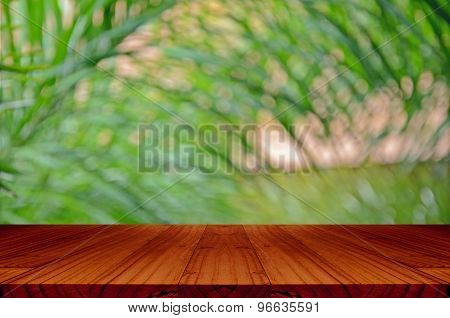 Blurred Backyard Garden Background With Perspective Wood Window View.