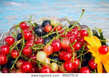 Red And Black Currants With Leaves In A Bowl On A Wooden Background