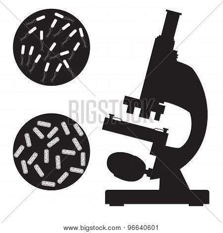 Black medical microscope and bacterium on a white background