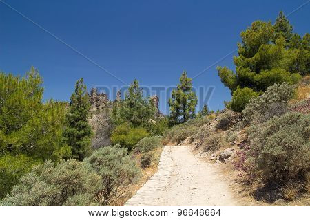 Gran Canaria, Footpath To Roque Nublo