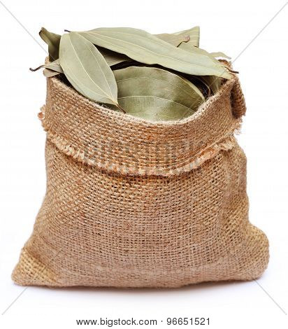 Bay Leaves In Sack Bag
