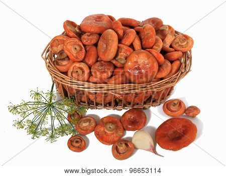 Orange Mushrooms in a basket with garlic and dill