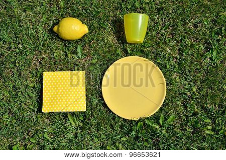 Yellow Picnic Set