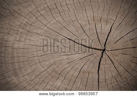 Brow Cut Wood