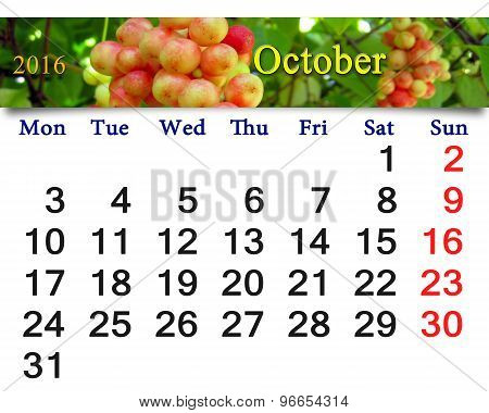 Calendar For October 2016 With Branch Of Schisandra