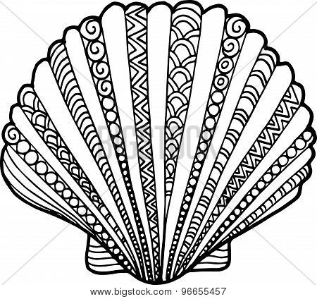 Hand Drawn Outline Doodle Shell Illustrations. Seashell Drawing Decorated With Abstract Ornaments