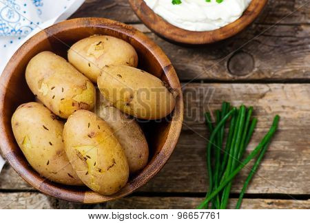 Boiled Young Potato With Cottage Cheese Sauce