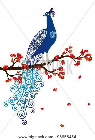 Vector illustration of blue abstract peacock on the red blossom tree branch on white background