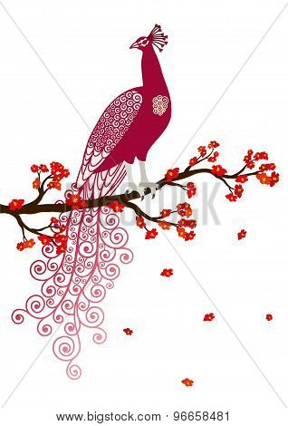 Vector illustration of abstract purple peacock on the red blossom tree branch on white background