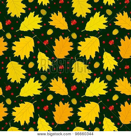 Autumn seamless pattern of Canadian oak's leaves, acorns and rowan berries. Dark green background.