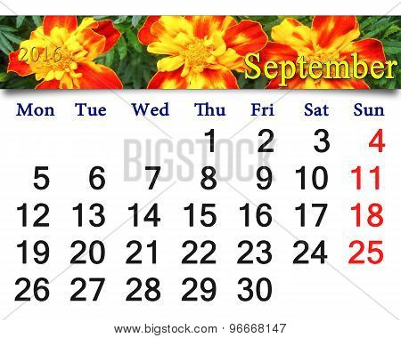 calendar for September 2016 with tagetes