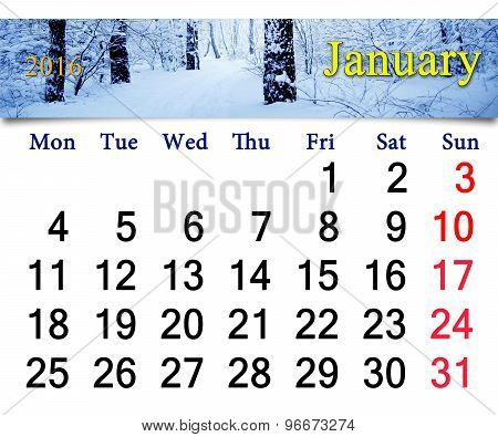 calendar for January 2016 with birch in snow