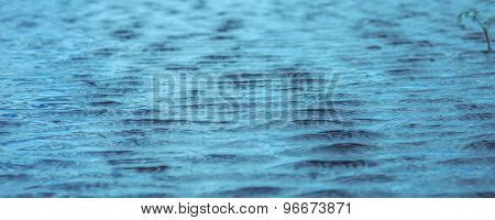 water rippling in the wind