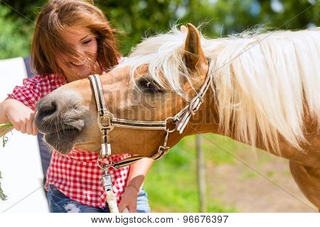 Woman feeding horse on pony farm