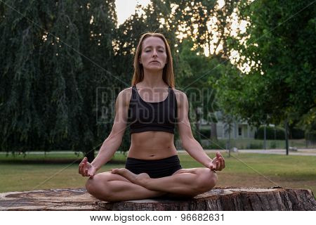 Athletic Woman In An Artistic Pose