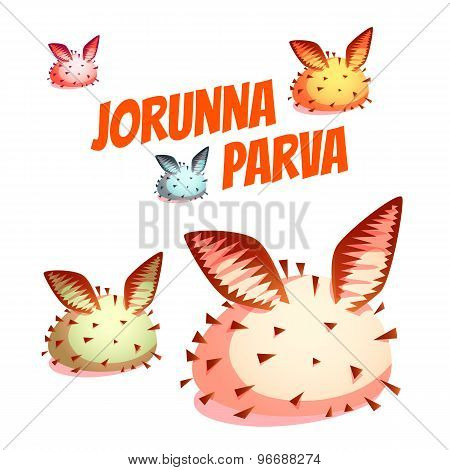 Set of sea cute slug Jorunna Parva. Vector illustration