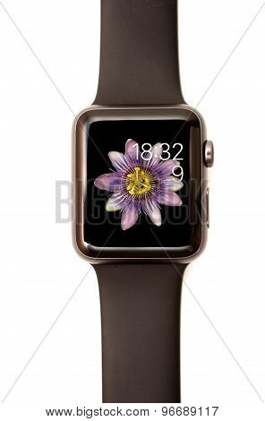 Apple Watch Motion Face Screen