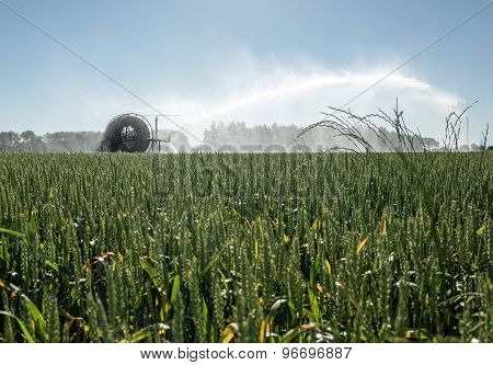 Irrigation Pivot Watering The Fields