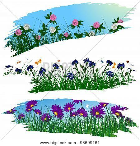 Set Of Brushstroke Flower Frames