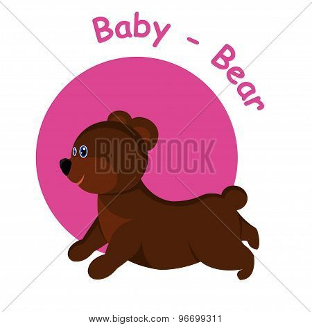Baby Bear Illustration