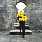 picture of keyhole  - Man carrying golden dollar sign climbing old concrete stairs toward keyhole with blank white view - JPG