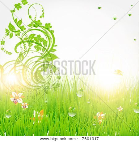 Summer grass wallpaper with flowers, ladybird, drops and sun shine. eps 10.