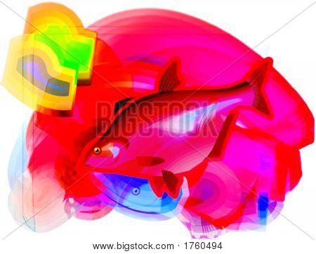 2Fish Copy