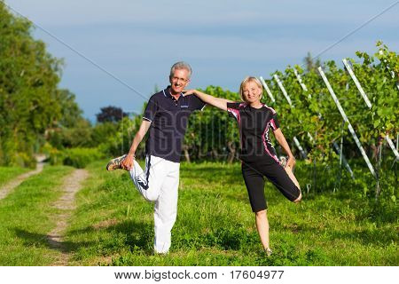 Mature or senior couple in jogging gear doing sport and physical exercise outdoors in a vineyard, stretching and gymnastics