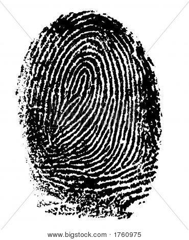 Fingerprint - Index Finger