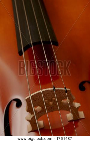 Cello'S Strings