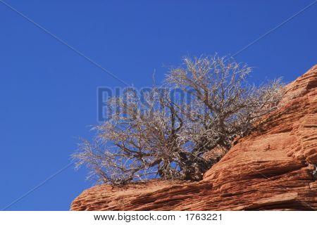 Slickrock Formation