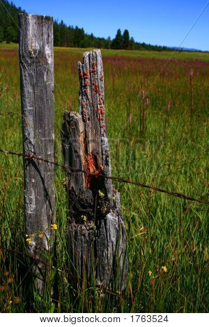 Idaho Fence 3