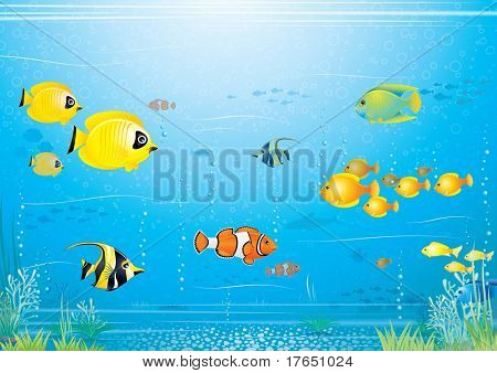 Sea life scene - underwater illustrated vector background with beauty exotic tropical fishes
