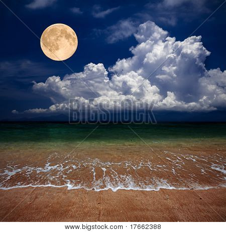 beach and moon