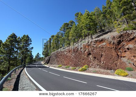 Mountain Road In Teide National Park