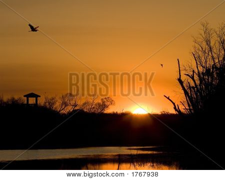 Sunrise At Brazos Bend