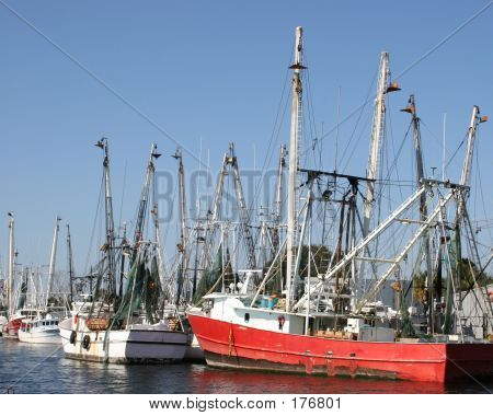 Fishing Boats In Florida