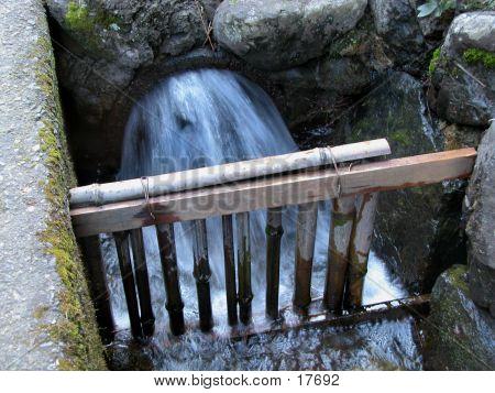 Water Torrent