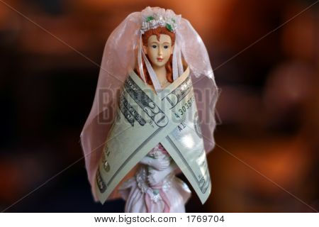 Bride Wrapped In Money