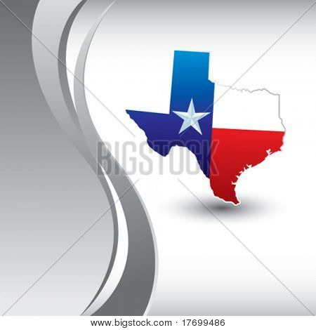 lonestar state on silver wave background