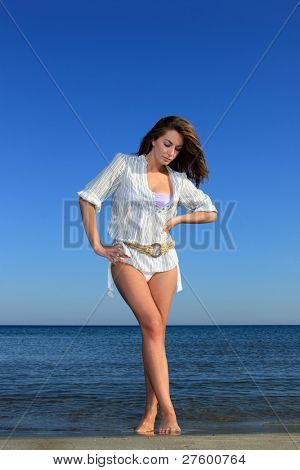 The beautiful model posing on the beach