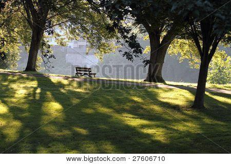 Park Bench On A Summer Morning