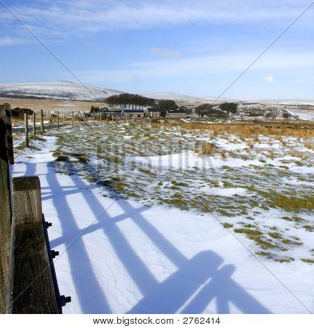 Dartmoor In Winter